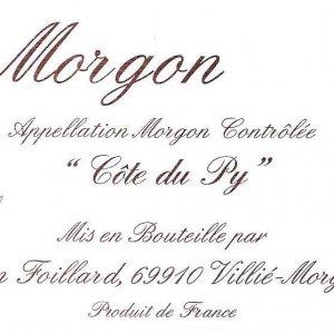 MORGON FOILLARD (2)